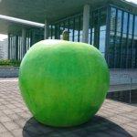 兵庫県立美術館の青いリンゴの画像